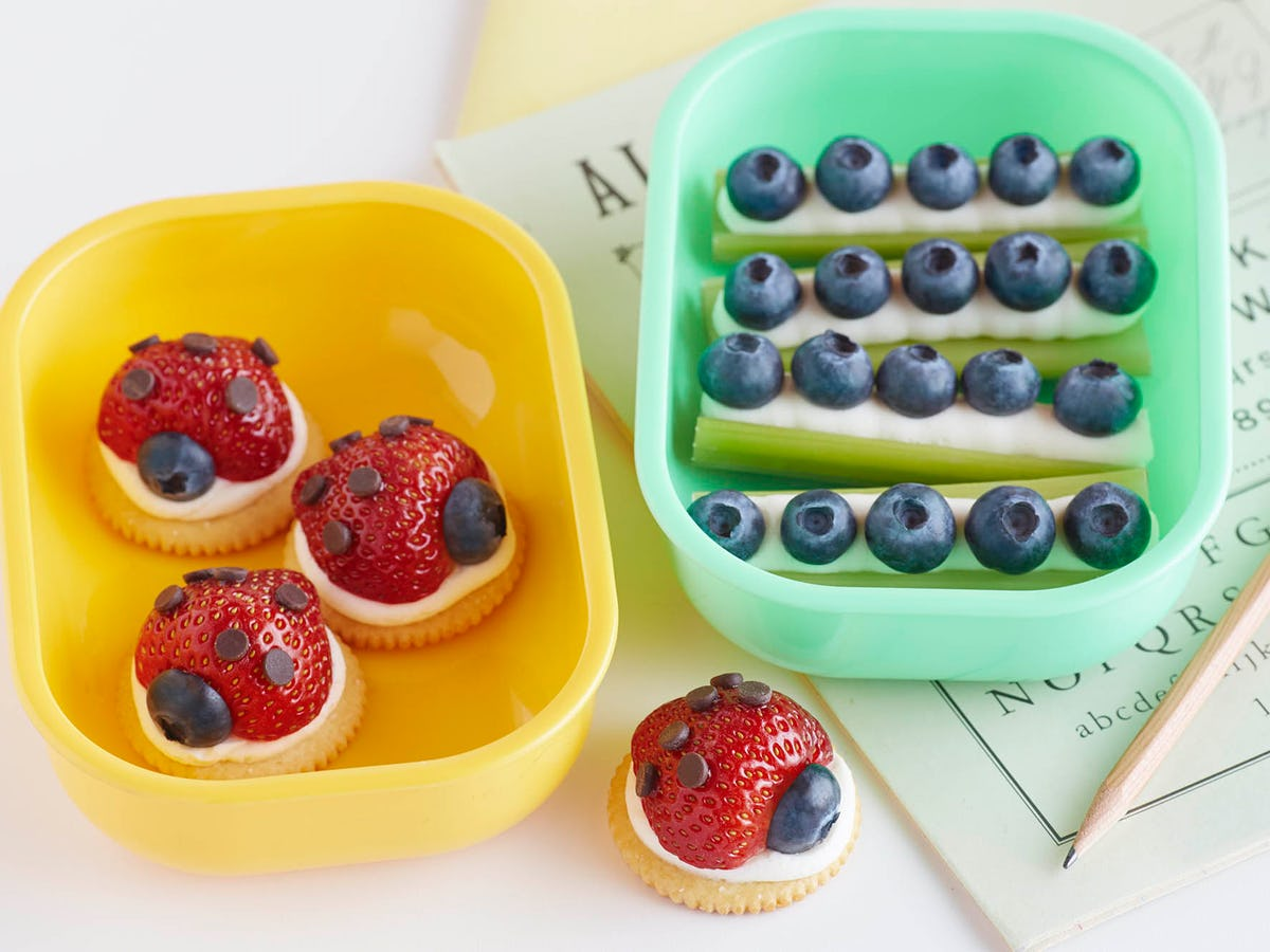 Lady Bugs And Ants On A Log Bento Box