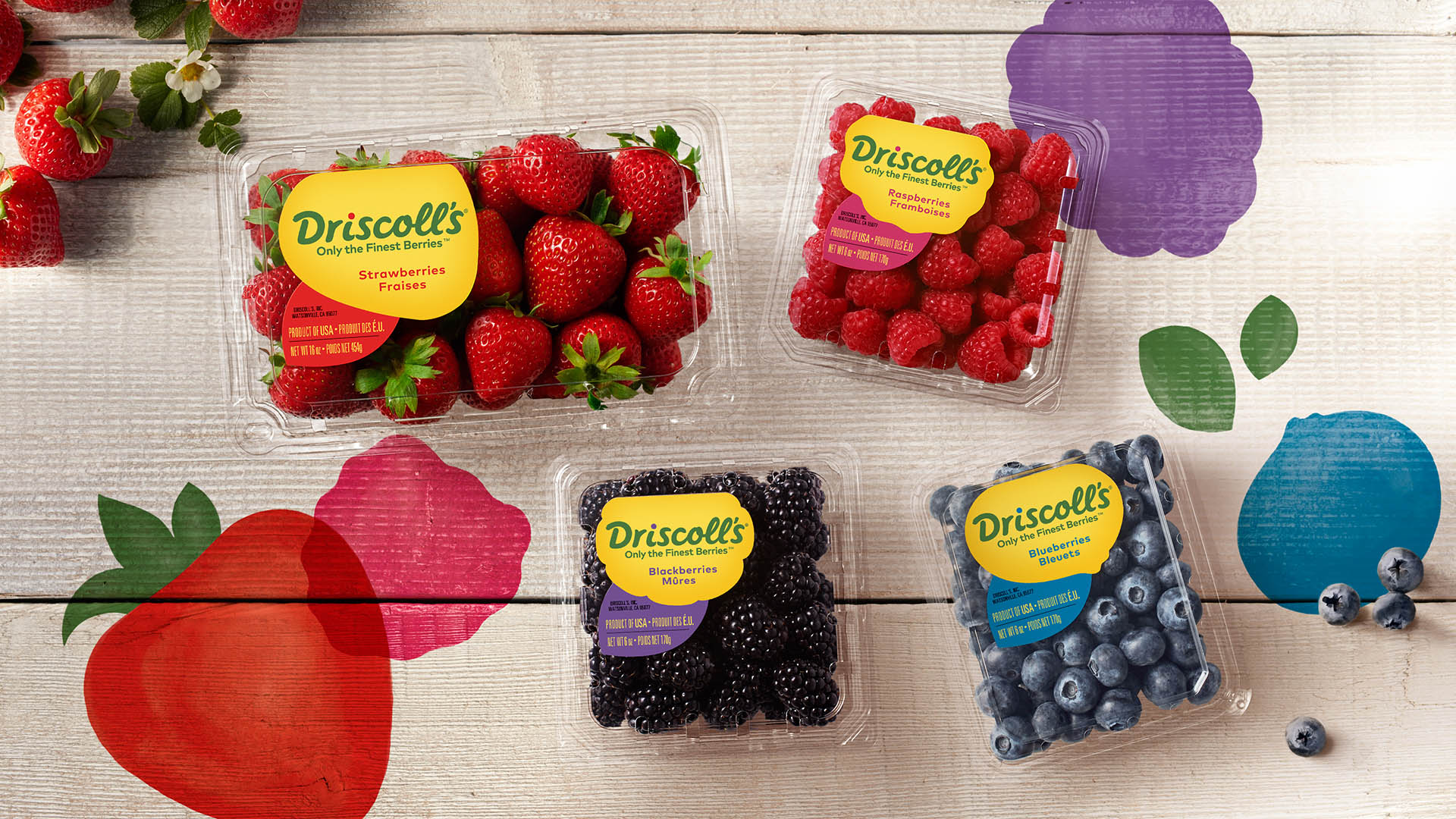 Berry Sweepstakes | Driscoll's