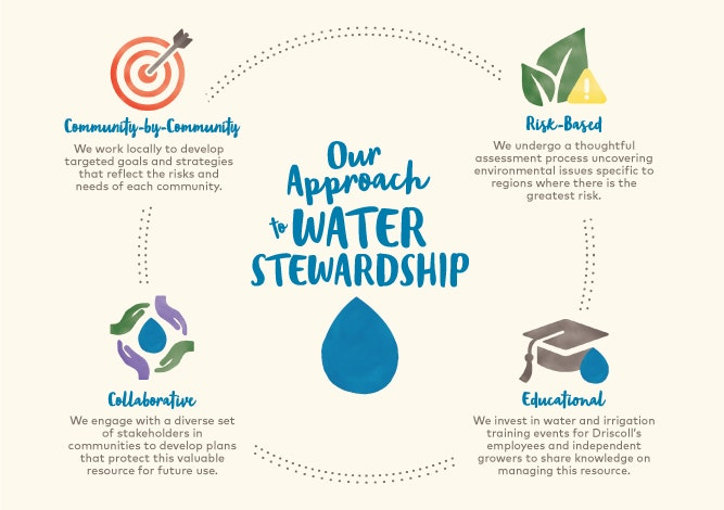 Driscoll's approach to water infographic