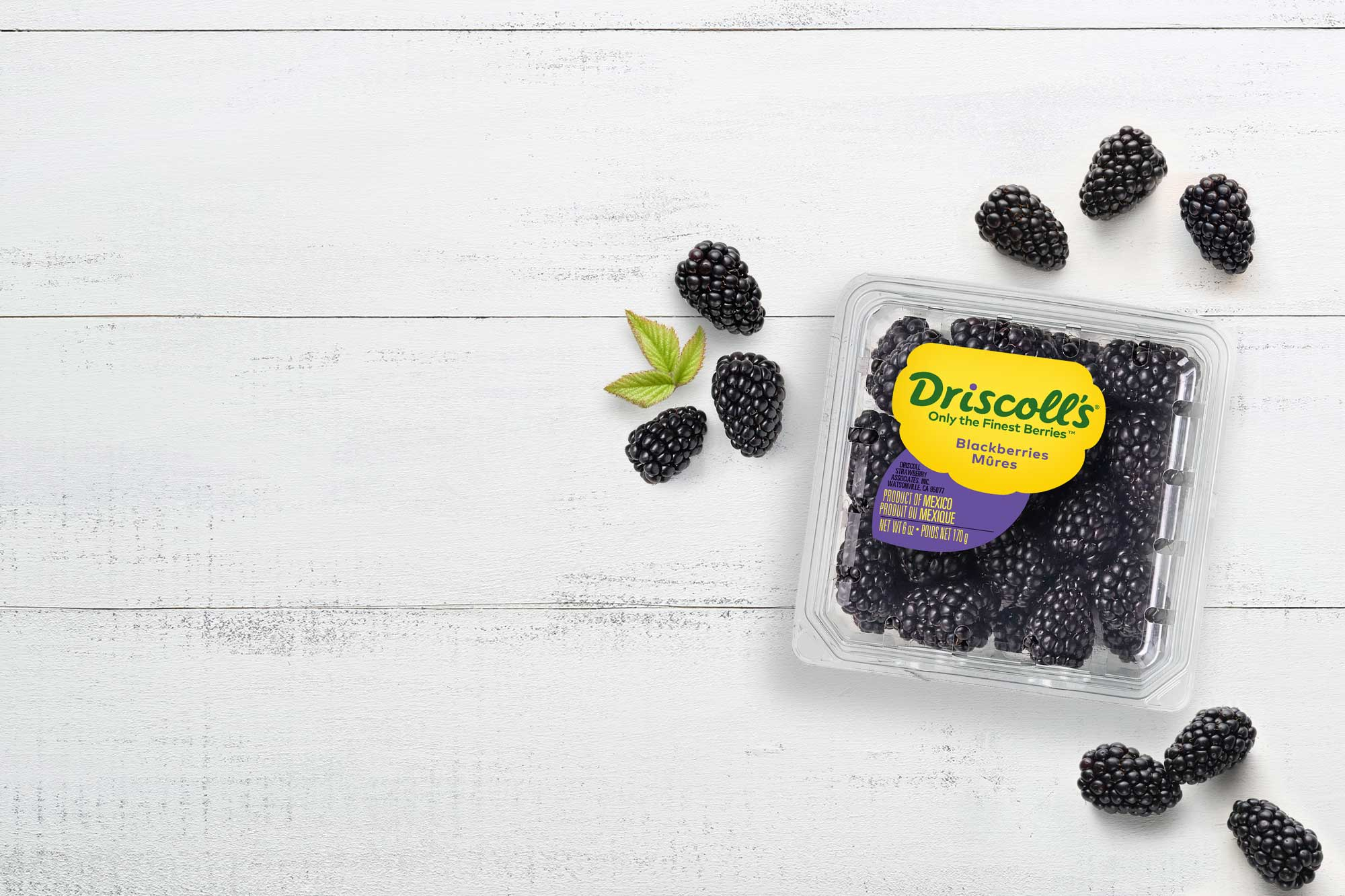 Blackberries Driscoll S
