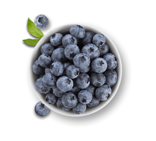 Bowl of Driscoll's blueberries