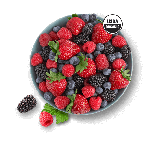 Bowl of organic Driscoll's berries