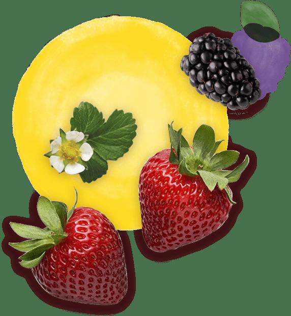 Driscolls fruit