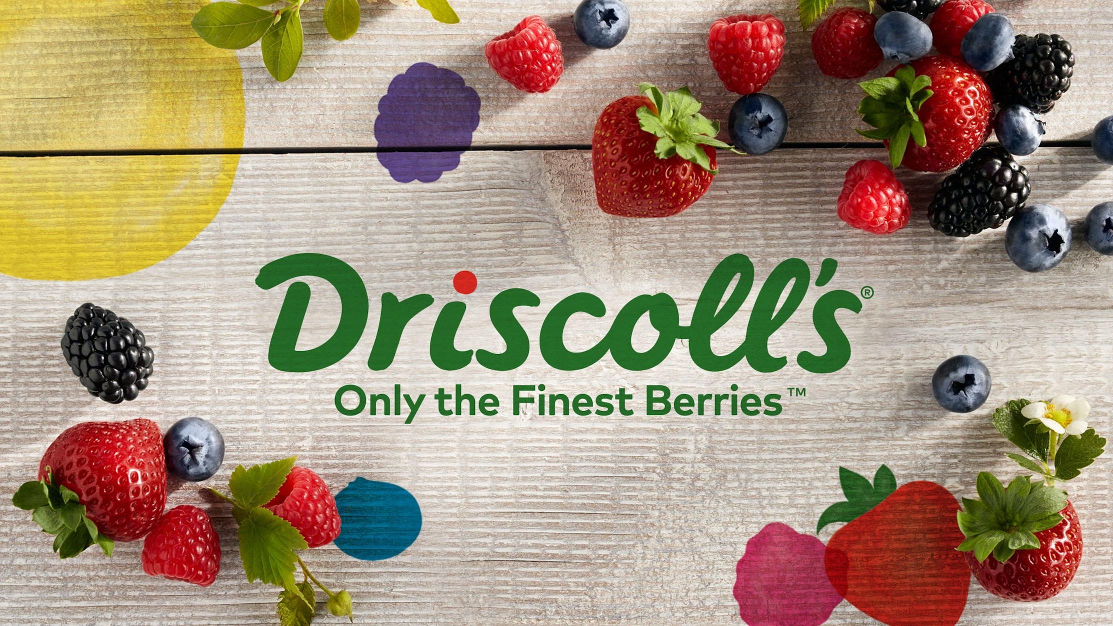 Kết quả hình ảnh cho Driscoll's